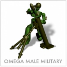 stikfas militare