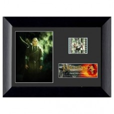 Signore degli annelli Fellowship of the Ring Special Edition Mini Cell