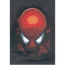 spider man maglia maniche lunghe