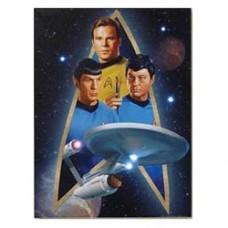 Star Trek Starfleet Light-Up Canvas Print