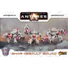 Ghar Assault Squad (plastic)