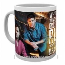 SUPERNATURAL - SAM & DEAN mug