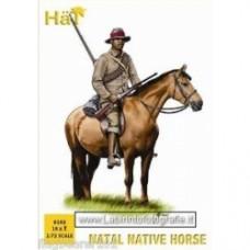 Hat 1/72 Natal Native Horse