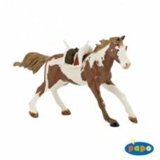 Western Cavallo Indiano