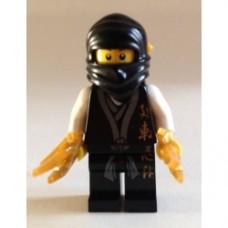 Ninja 02