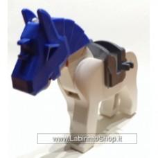 Cavallo 13