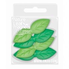 Magnete foglie
