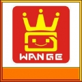 wange toys