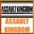 Assault kingdom