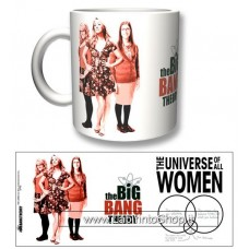 Big Bang Theory - All Women Mug