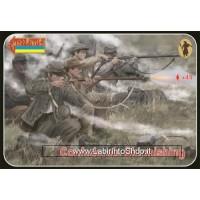 Strelets - 158 A.C.W. Confederates Skirmishing