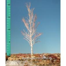 Mini Natur - 215-10 - Aspen Barren