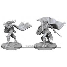 Dungeons & Dragons: Deep Cuts - Elf Female Paladin