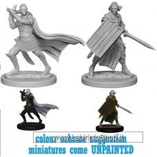 Dungeons & Dragons: Pathfinder Battles Unpainted Minis:  Elf Male Paladin