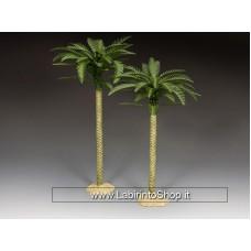 SP111 K&C's Palm Trees