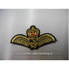 Patch Wings and Crown